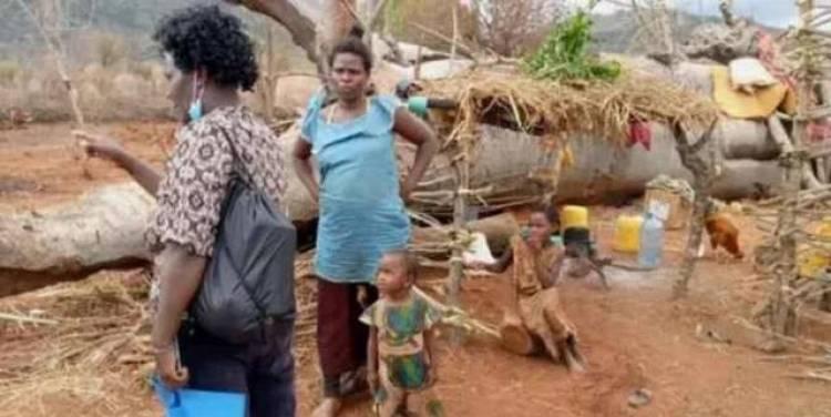 Incroyable !!! Cette femme vit dans un tronc d'arbre avec ses enfants