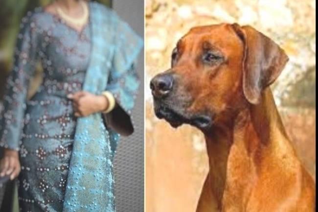 Son mari l'avait épousée pour son chien
