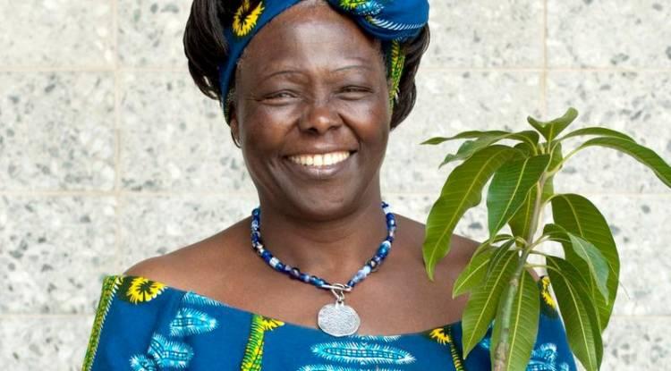 Sur les traces de Wangari Maathai, première femme africaine à recevoir le prix Nobel de la paix !
