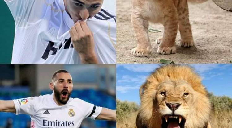 Benzema brille de mille feux avec le Real Madrid en Liga espagnole