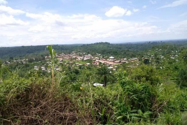 Massacres à Beni : plus de 12 morts parmi les déplacés basés sur le mont Ruwenzori à Mwenda